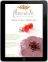 ipad ebook cover- smal
