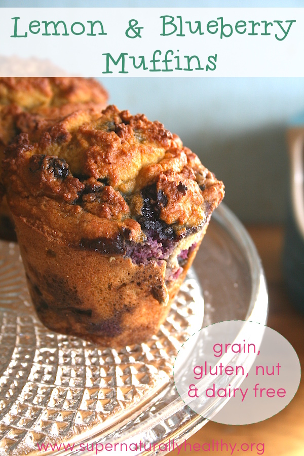 lemon and blueberry muffin cover