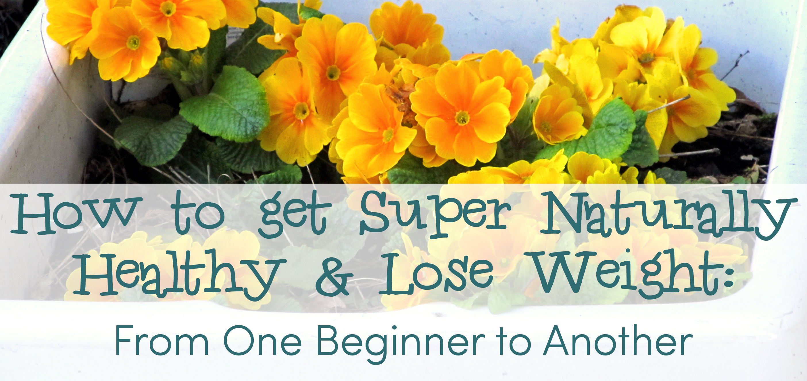 how to start losing weight for beginners
